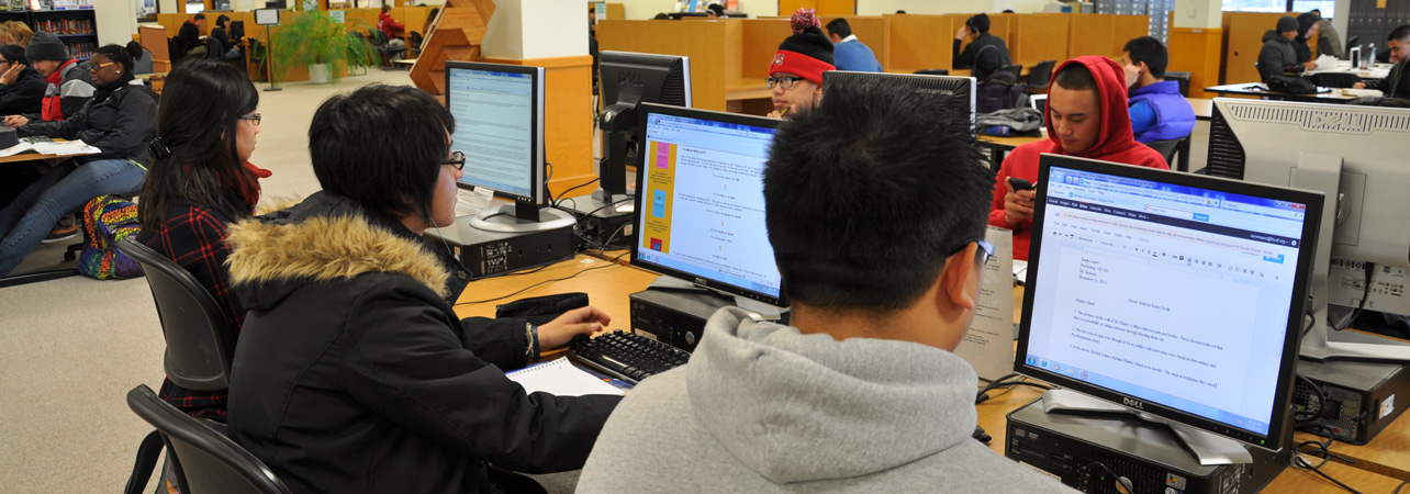 skykline college students at computers
